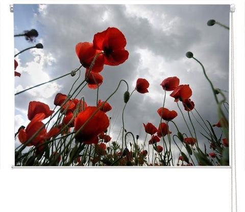 Red poppy field Printed Picture Photo Roller Blind - RB149 - Art Fever - Art Fever