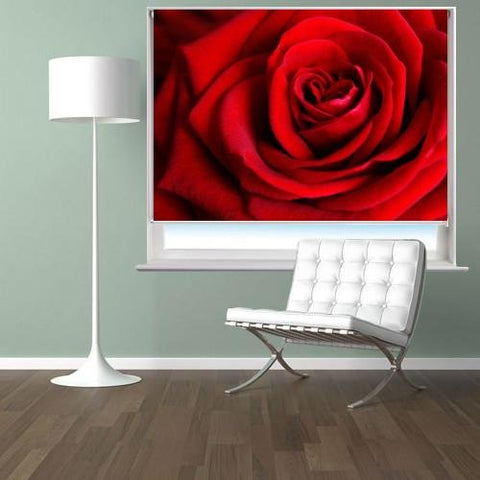 Red rose close up Printed Picture Photo Roller Blind - RB161 - Art Fever - Art Fever