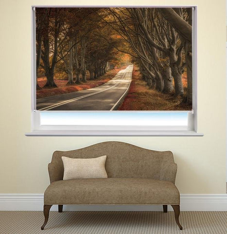 Road through the Forest Printed Picture Photo Roller Blind - RB431 - Art Fever - Art Fever