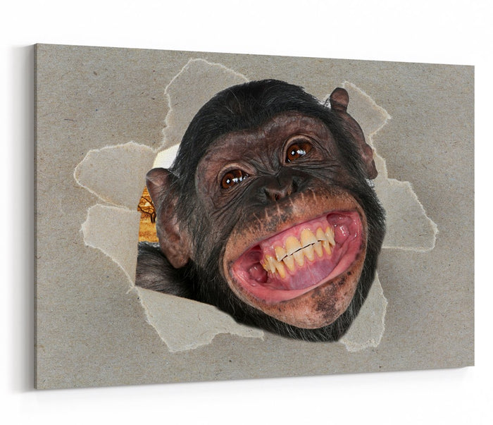 The Cheeky Chimp Peeking through the Canvas Animal Scene Printed Canvas Print Picture - SPC192 - Art Fever - Art Fever