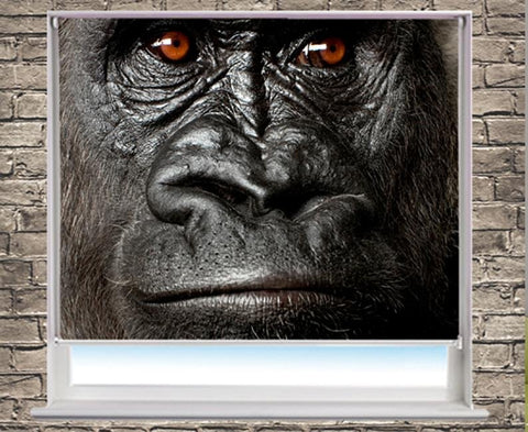 The silverback gorilla Close up Printed Picture Photo Roller Blind - RB252 - Art Fever - Art Fever