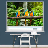 Three Blue and Gold macaw over the waterfall Printed Picture Photo Roller Blind - RB709 - Art Fever - Art Fever
