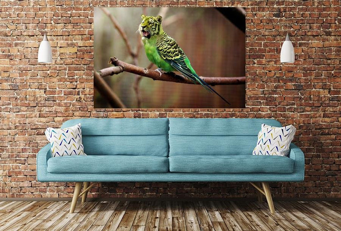 Tiger Budgie Image Printed Onto A Single Panel Canvas - SPC10 - Art Fever - Art Fever