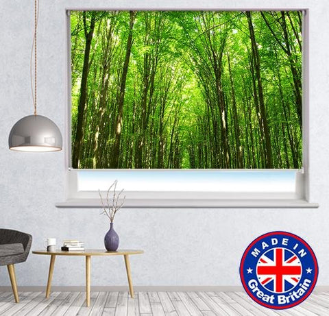 Trees Of Nature Printed Picture Photo Roller Blind - RB667 - Art Fever - Art Fever