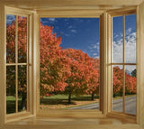 WIM275 - window frame view of the autumn trees - Art Fever - Art Fever