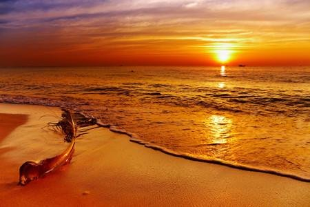 WM127 - GOLDEN SUNSET TROPICAL BEACH WALL MURAL - Art Fever - Art Fever