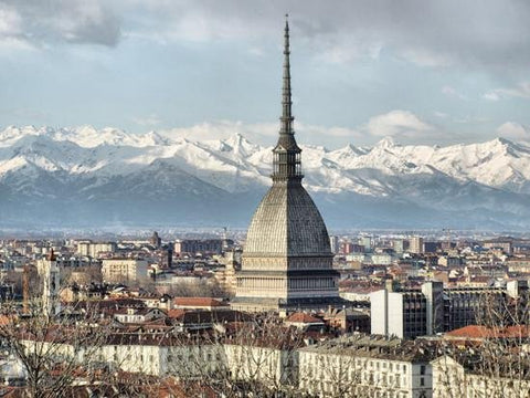 WM152 - CITY VIEW OF TURIN WALL MURAL - Art Fever - Art Fever