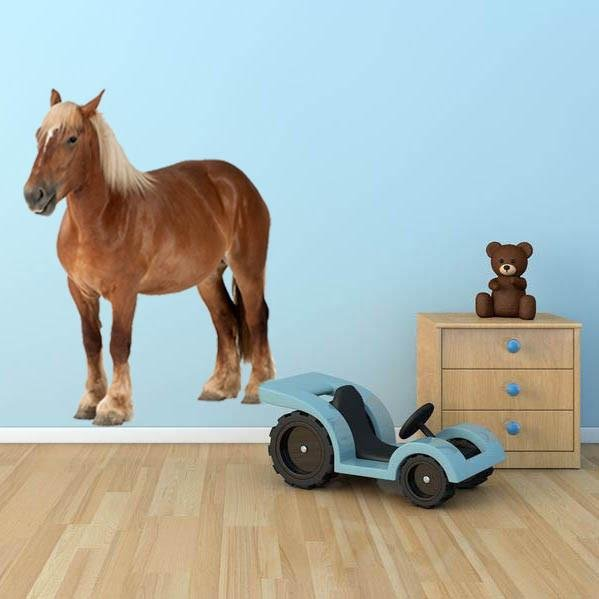 wsd133 - Pony animal removable wall sticker - Art Fever - Art Fever
