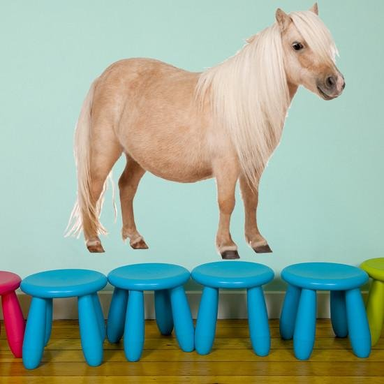 wsd142 - large Shetland Pony set removable wall sticker - Art Fever - Art Fever