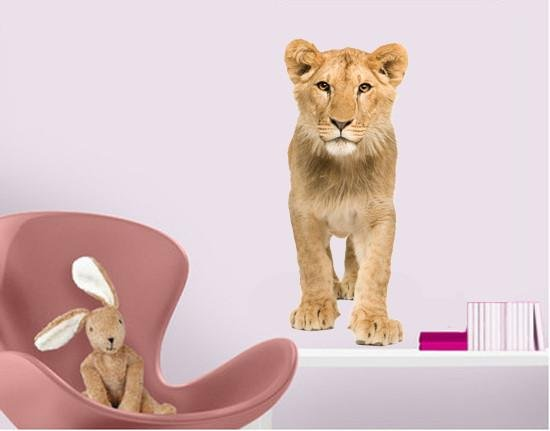 WSD149 - Large lion cub photo wall sticker. removable animal wall decal - Art Fever - Art Fever