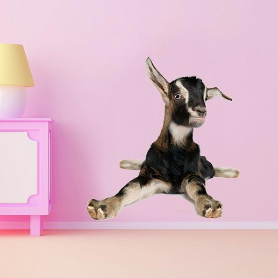 WSD177 - Young goat lying down animal photo wall decal - Art Fever - Art Fever