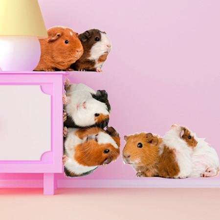 wsd179 - Cute guinea pig set animal photo wall decals - Art Fever - Art Fever
