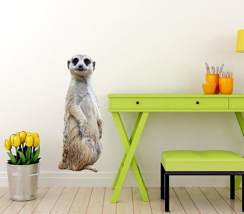 WSD217 - Large Meerkat Wall sticker - Art Fever - Art Fever