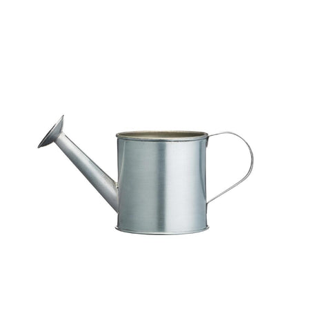 Mini Watering Can Chip Cup