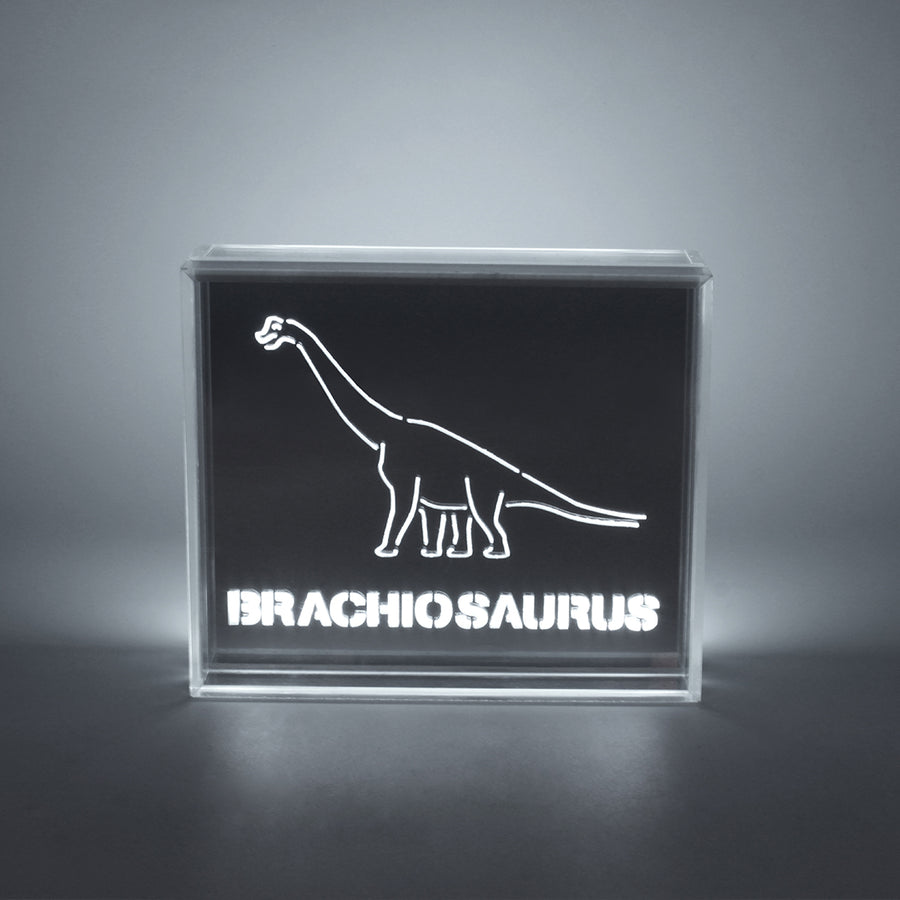 'Dinosaur' Acrylic Box LED