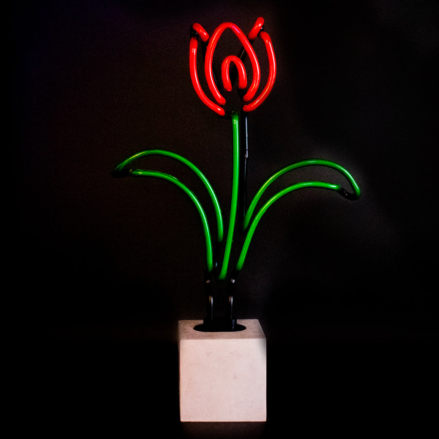 Neon Tulip Sign - Locomocean