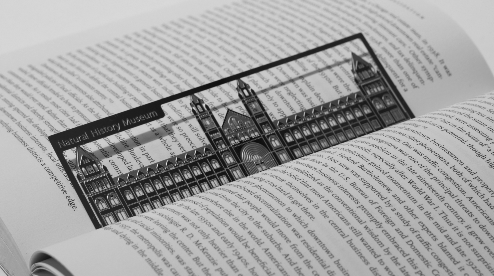 Natural History Museum - Stainless Steel Bookmark