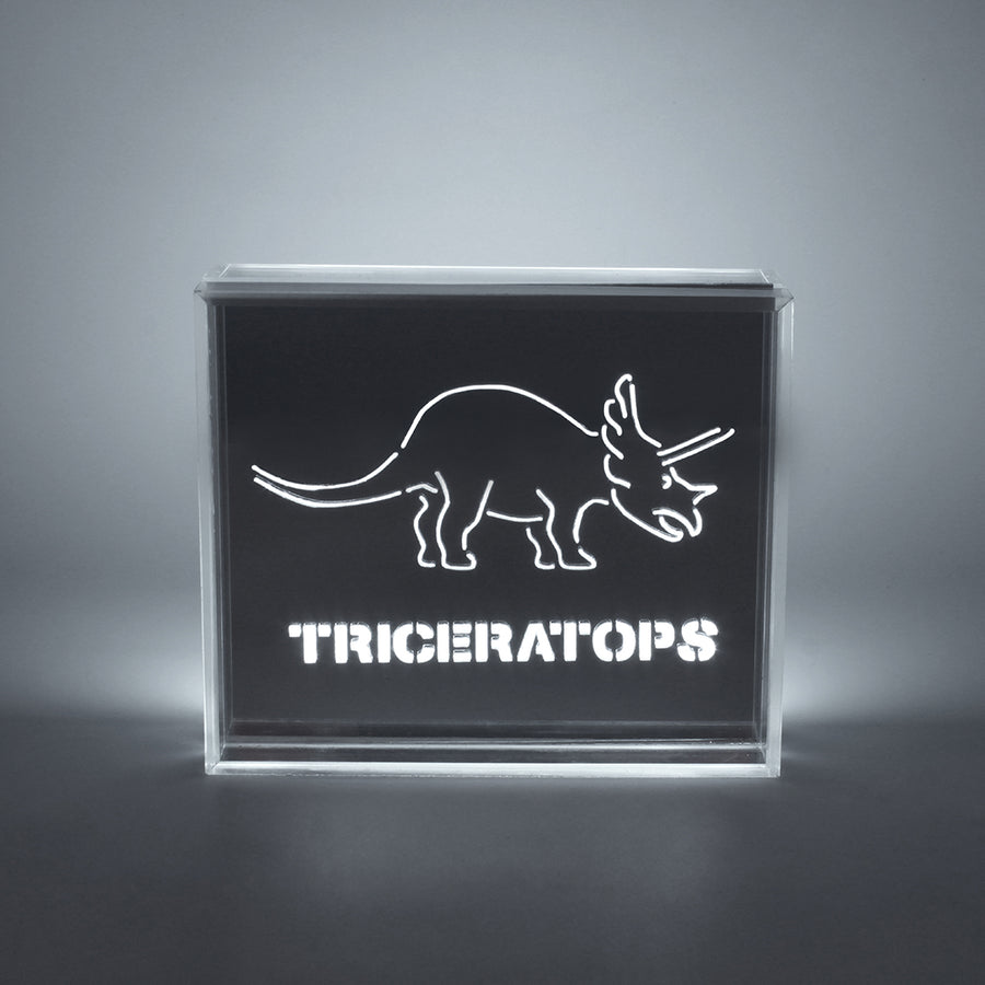 'Dinosaur' Acrylic Box LED - Locomocean