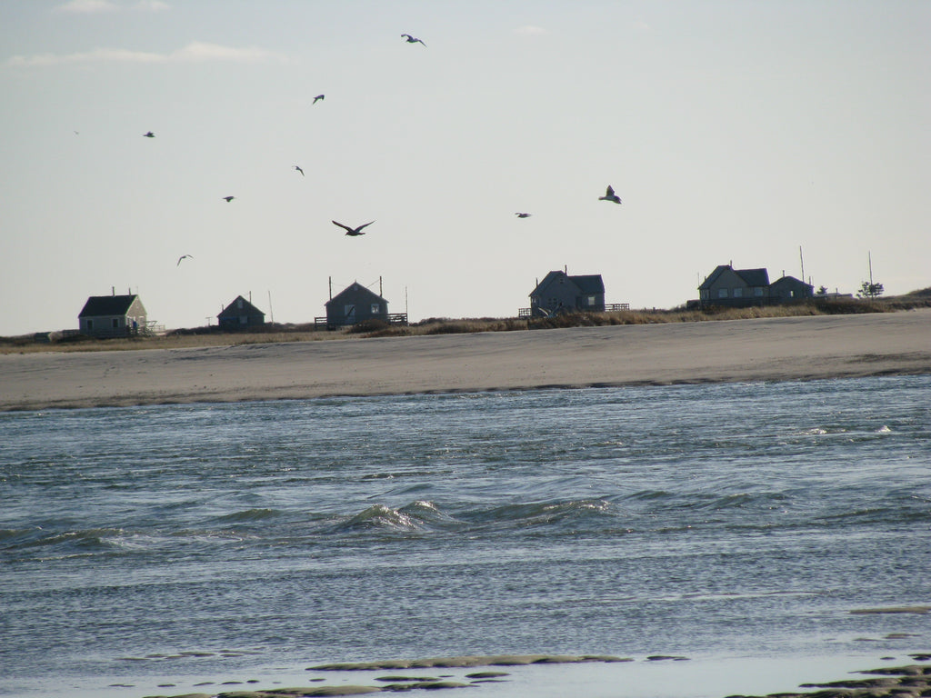 nauset beach and chatham harbor