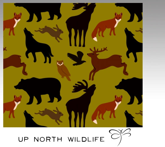 'Up North Wildlife'