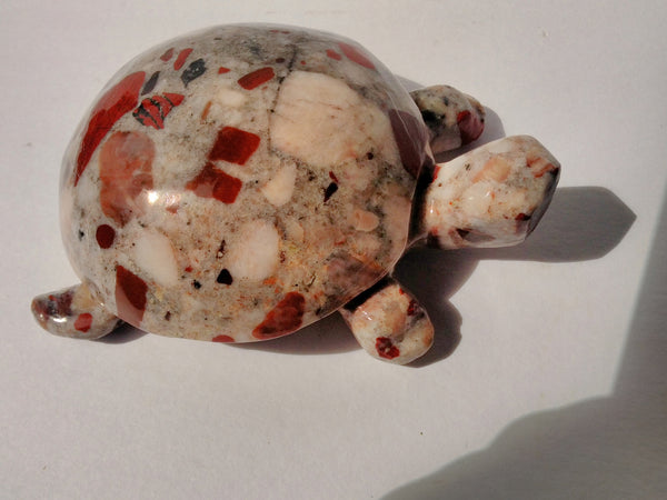Pudding Stone Turtle (medium small)