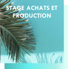 Stage Achats et Production
