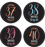 Pregnancy Milestone Stickers