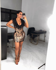 The JESSICA Sequin Dress (4270308786260)