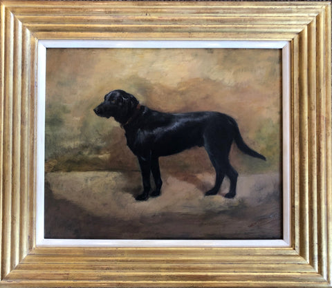 ON SALE: Oil Painting on panel 'Black Labrador' by Ivester Lloyd. SALE PRICE: