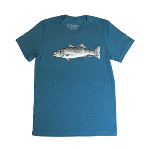 """Striped Bass"" T-Shirt in Teal"