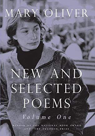 New and Selected Poems, V. I
