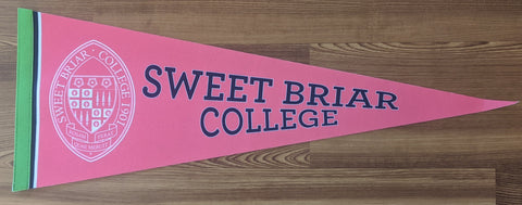 "Pennant 9"" x 24"" With White Seal"
