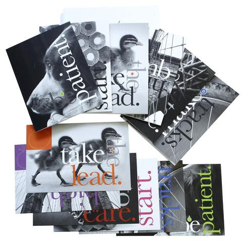 Black and White Greeting Card and Postcard Set