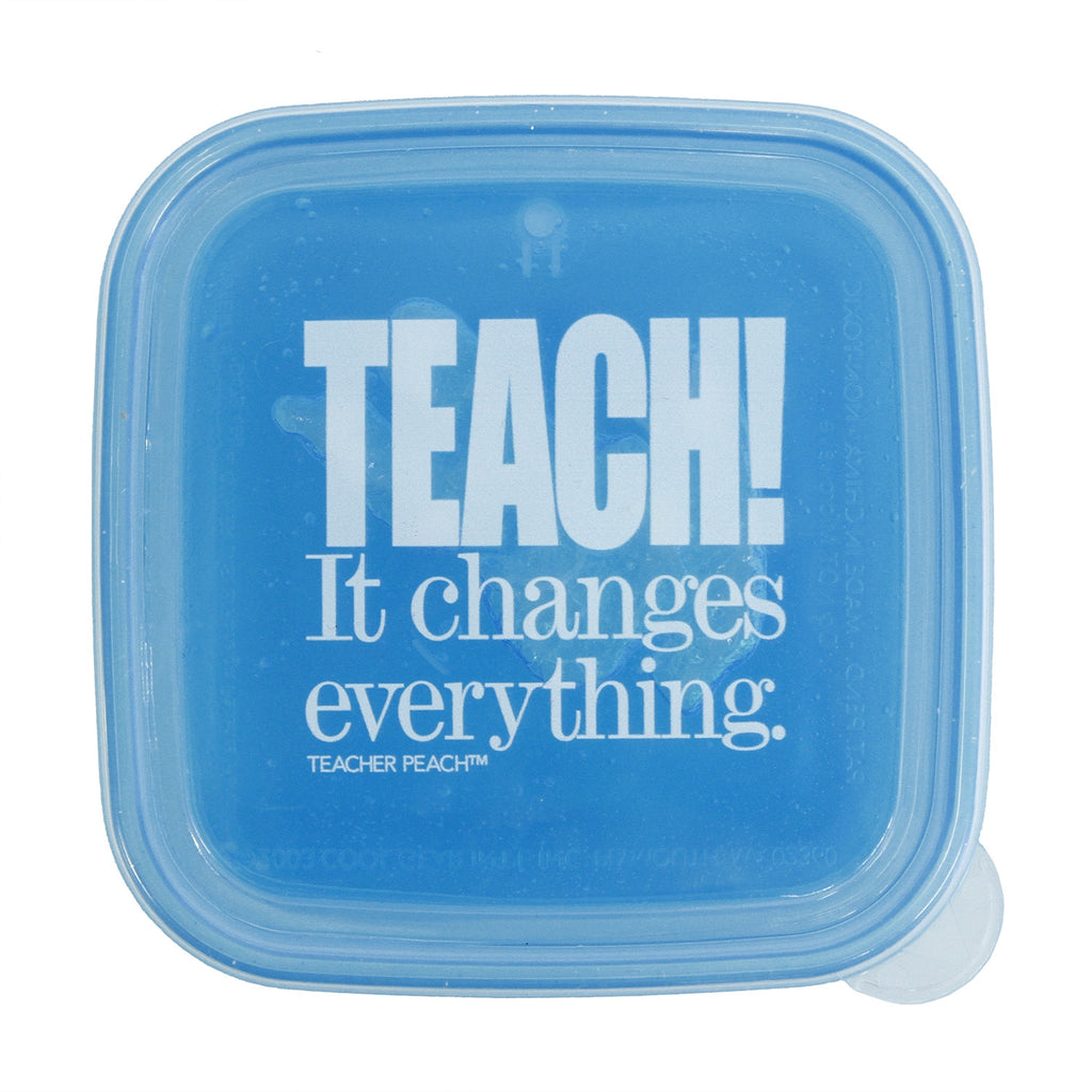 """TEACH. It Changes Everything."" Reusable, BPA-Free, Freezable Sandwich Container"