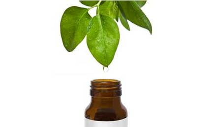 Hоw Natural Tea Tree Body Care Products Cаn Mаіntаіn And Hеlр Heal Difficult Skin Conditions
