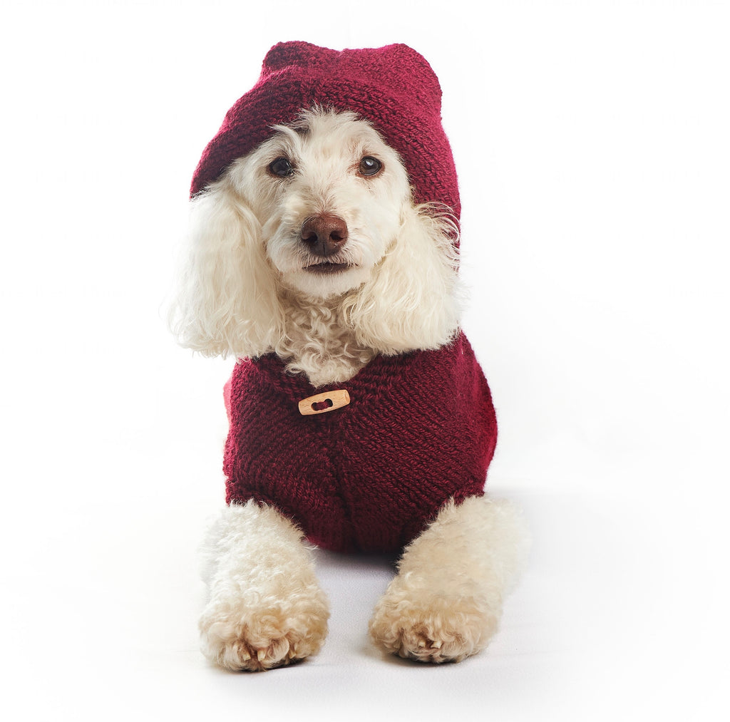 Drumstick - Maroon Hooded Dog Jumper