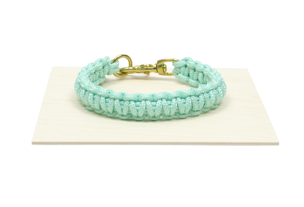 Dog Collar In Aqua