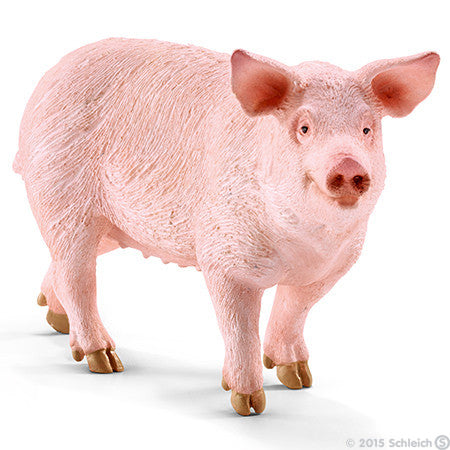 Pig - 13782 - Finnegan's Toys & Gifts