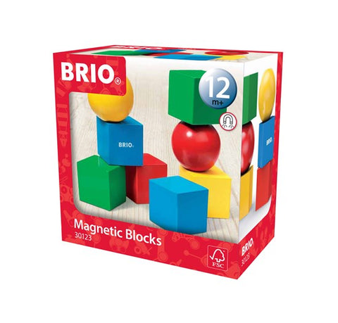 BRIO - Magnetic Blocks