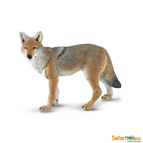 Coyote - Safari - Finnegan's Toys & Gifts