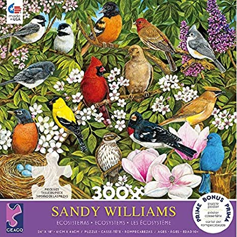 Sandy Williams - Ecosystems Birds (300 pcs)