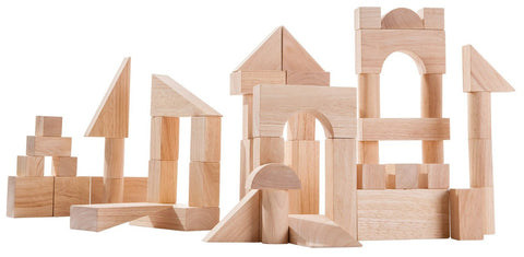 Plan Toys - 50 wood blocks - Finnegan's Toys & Gifts