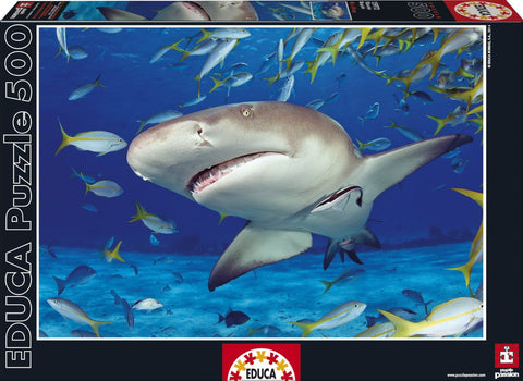 Shark - 500 Piece Puzzle - Finnegan's Toys & Gifts