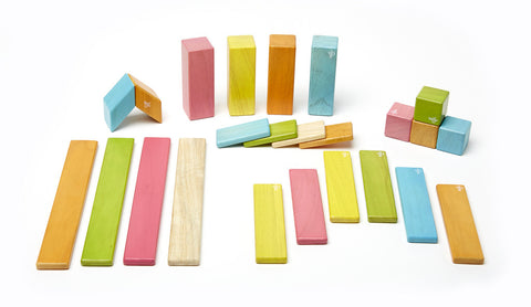24 Piece Tegu Magnetic Wooden Block Set, Tints - Finnegan's Toys & Gifts - 1