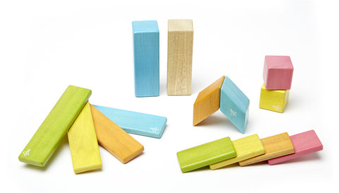 14 Piece Tegu Magnetic Wooden Block Set, Tints - Finnegan's Toys & Gifts - 1