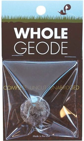 Whole Geode by Compact Curiosities