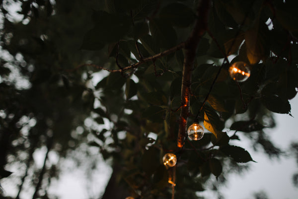 little miss lovely floral design // globe light strand rental