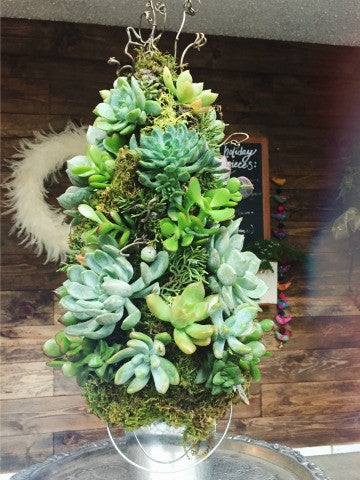 Succulent Tree Workshop: Wednesday, 12/12/18. 6 pm - 8 pm.