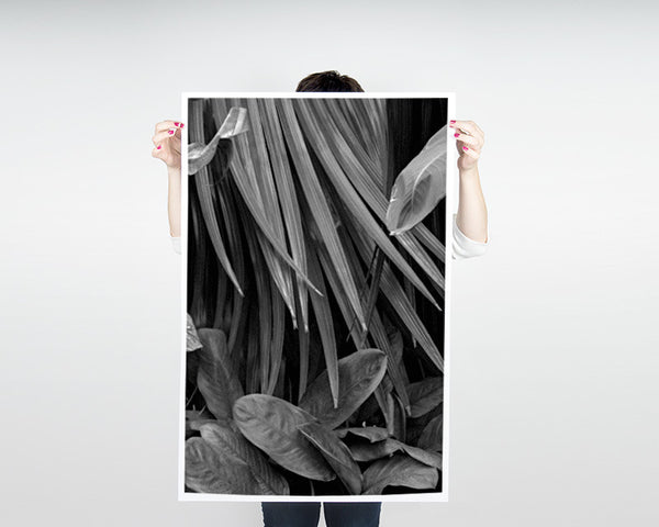 Palms Poster