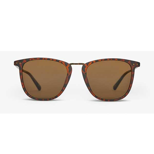 Local Supply NYC Sunglasses - Tort Brown